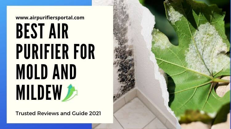 best air purifier for mold and mildew