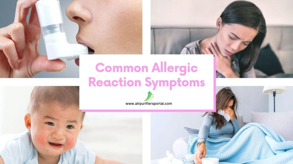 best air purifier for allergies 2021