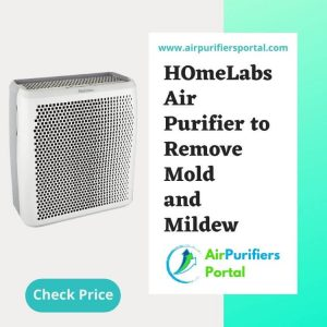 Best Air Purifier for Extra Large Spaces