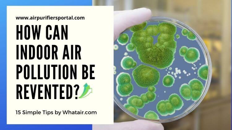 How Can Indoor Air Pollution be Prevented