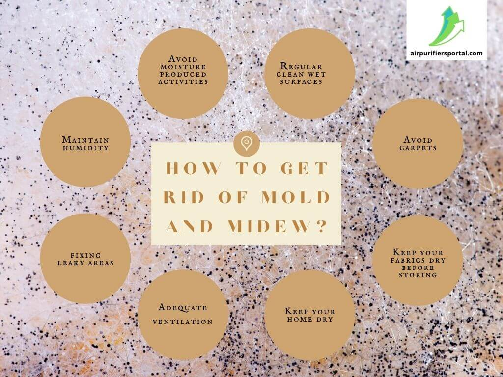 how to reduce mold and mildew