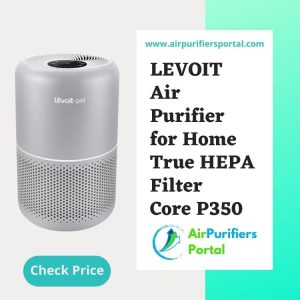 Best Inexpensive Air Purifier for Bedroom
